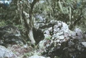 Fort Gomo Kadzamu3
