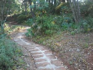 new-paving